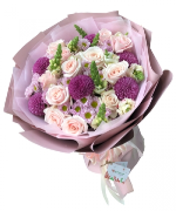 hoa bo hb060