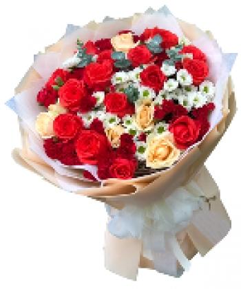 hoa bo hb061