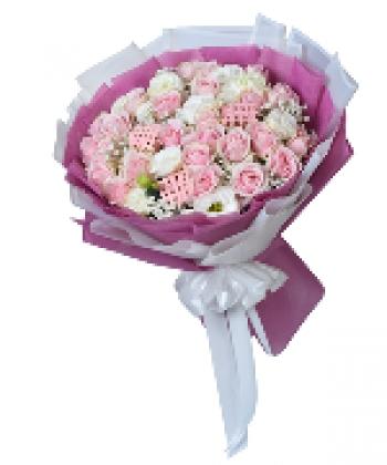 hoa bo hb062