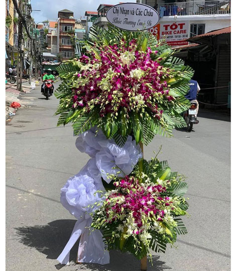 hoa tang le b045